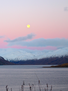 Moonlight Bay by Lynda Lybeck-Robinson