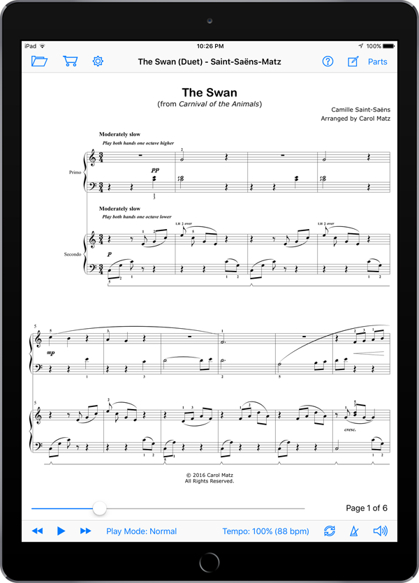 The Swan (Duet) – Saint-Saëns-Matz