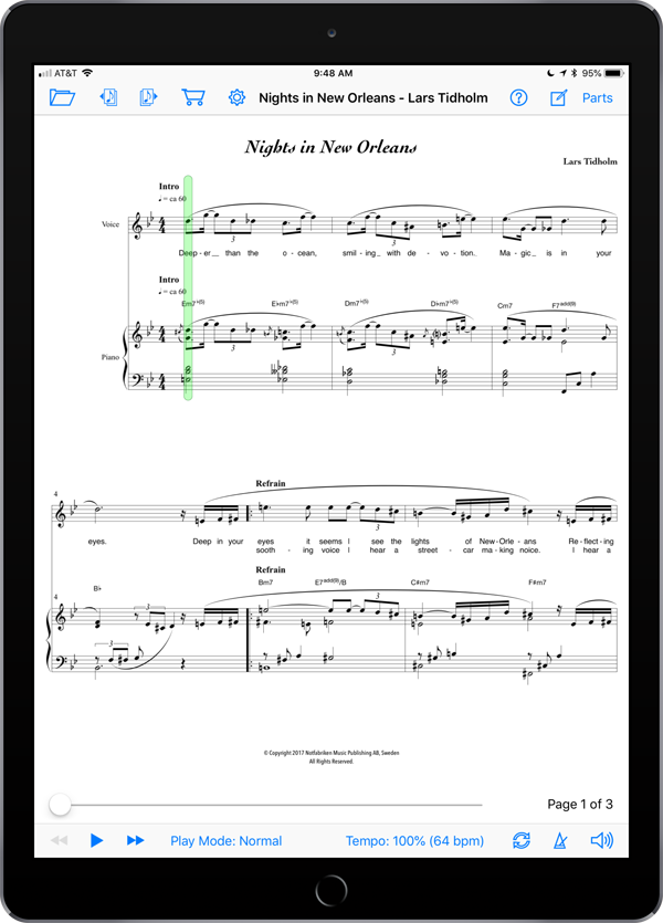 Nights in New Orleans by Lars Tidholm
